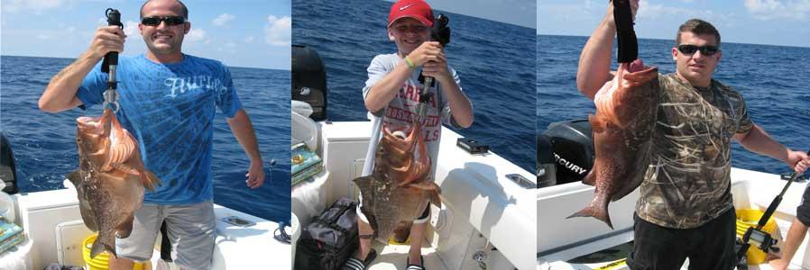 Gulf Fishing Charters - Tampa, ST Pete - Island Lure Fishing Charters